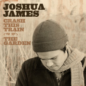 Joshua James - Crash This Train